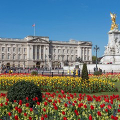 <strong>Buckingham Palace</strong>